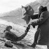 vanator din chirgizia 1966